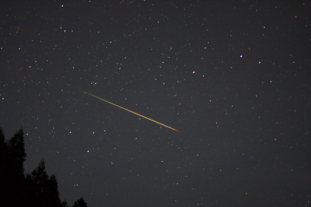 こと座流星群画像